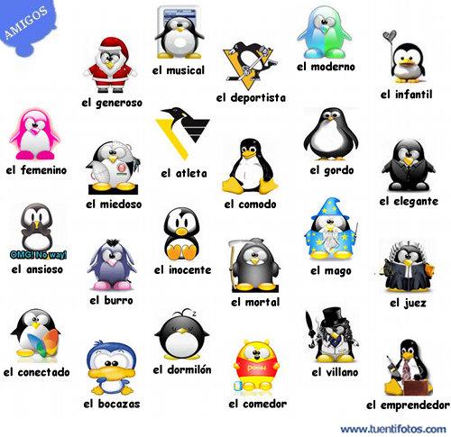 Amigos En Pinguinos