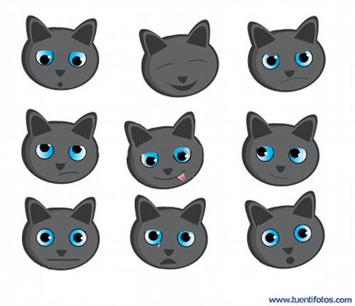 Animales de Caras De Gatitos