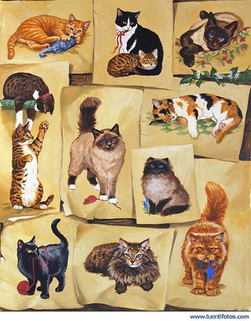 Animales de Dibujos De Gatos