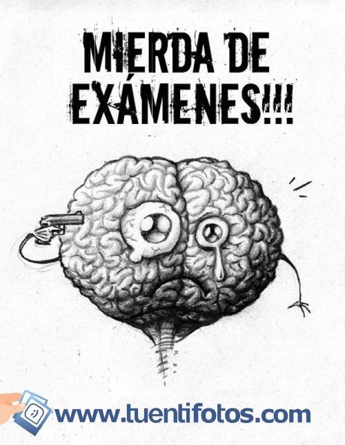 Frases de Mierda de Examenes