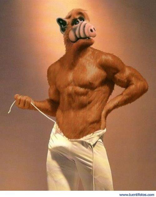 Personas de Alf Gay