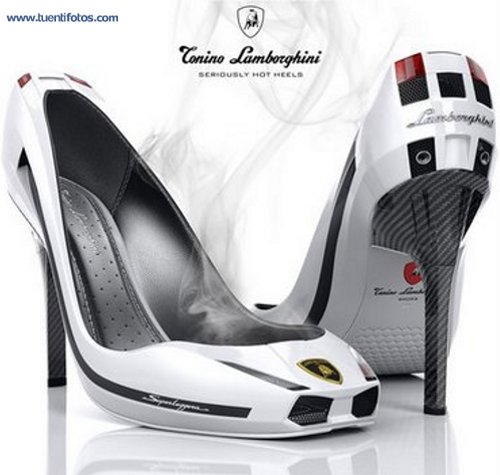 Ropa de Coche Zapato