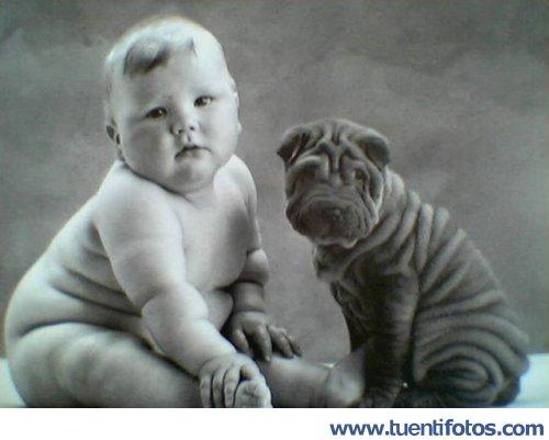 Parecidos de El Hermano Gemelo Es Un Perro