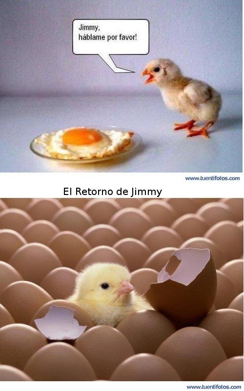 Animales de El Retorno de Jimmy