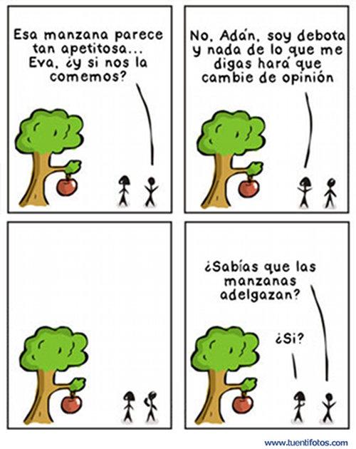 Machista de Las Manzanas Adelgazan