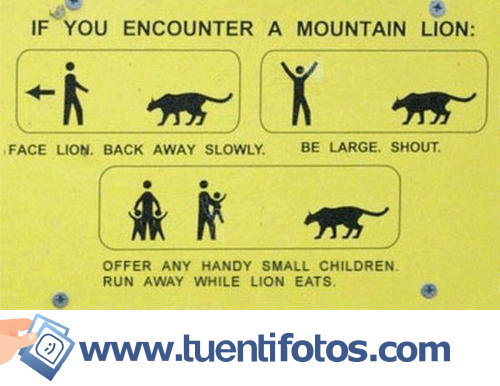 Señales de Si Te Encuentras Un León