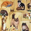Miniatura de Dibujos De Gatos
