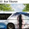 Miniatura de El Bus Tiburon