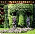 Miniatura de Un Jardin Que Llora
