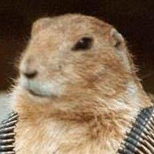 Miniatura de Hamster Guerrero