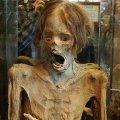 Miniatura de La Copia de la Momia