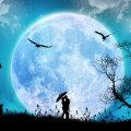 Miniatura de A La Luz De La Luna