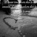 Miniatura de El Amor Inmaduro