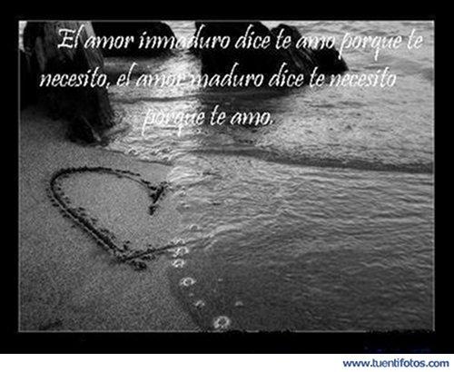 Frases de El Amor Inmaduro