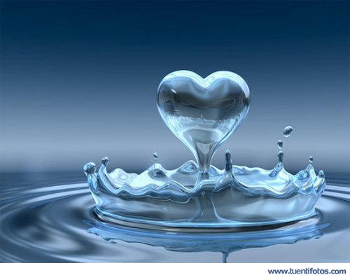 Amor de Corazon de Agua