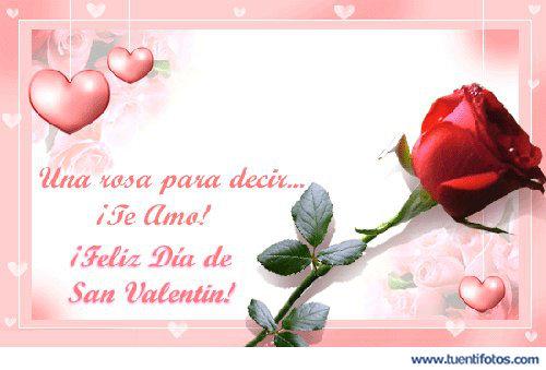 Amor de Una Rosa Para Decir Te Amo
